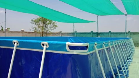 Bể bơi di động Sài Gòn