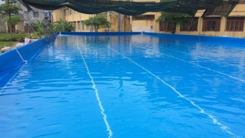 Làm gì để nước bể bơi trong và xanh?